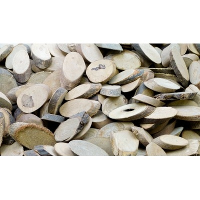 Branch Offcuts - Oval