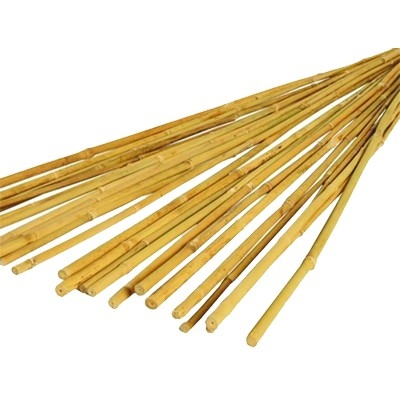 Bamboo Sticks (Pack 20)