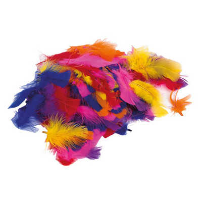 Coloured Feathers Assorted Set