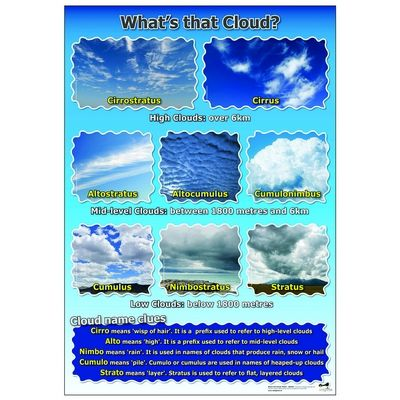 A1 What'S The Cloud Poster Each